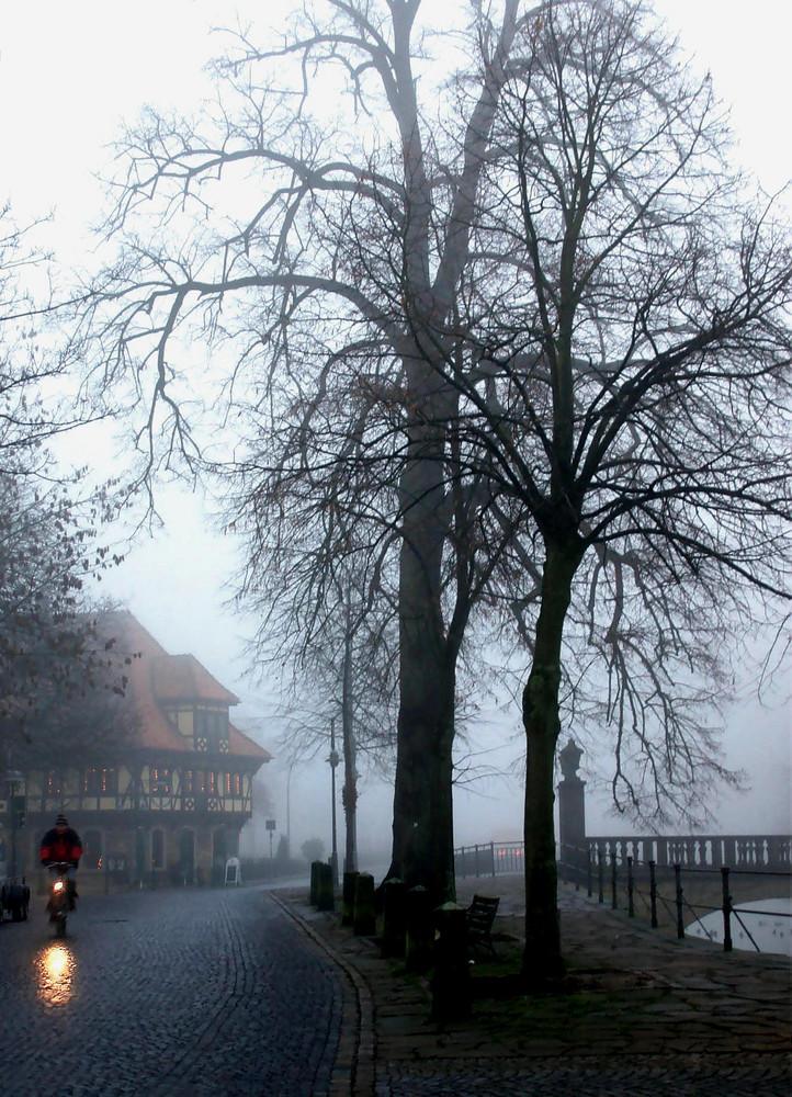 Nebel in Steinfurt