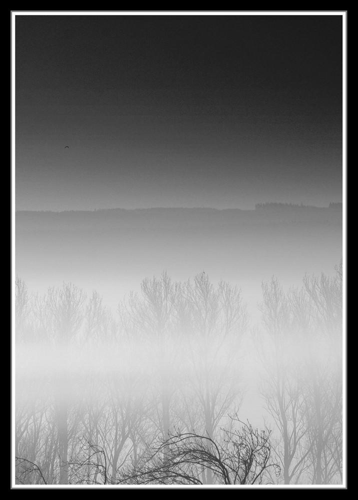 Nebel in SW