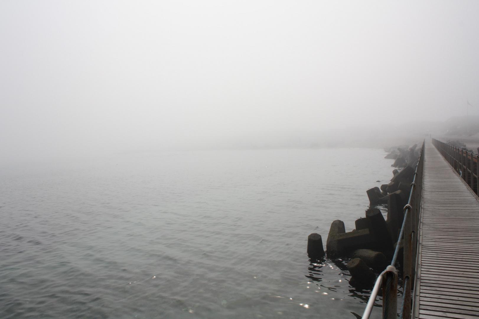 Nebel in Vorupør