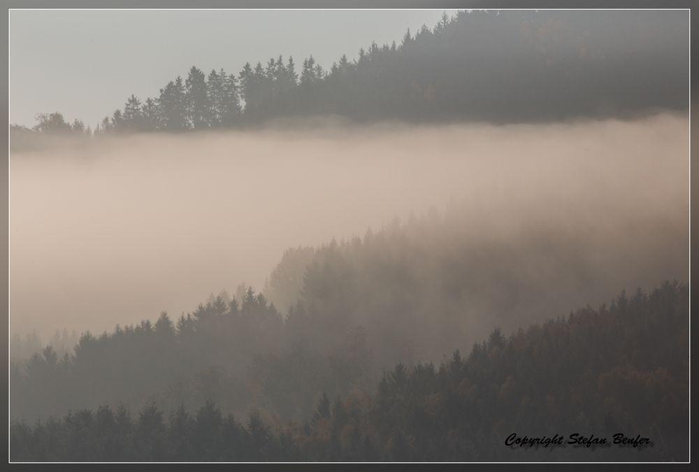 Nebel in Wittgenstein