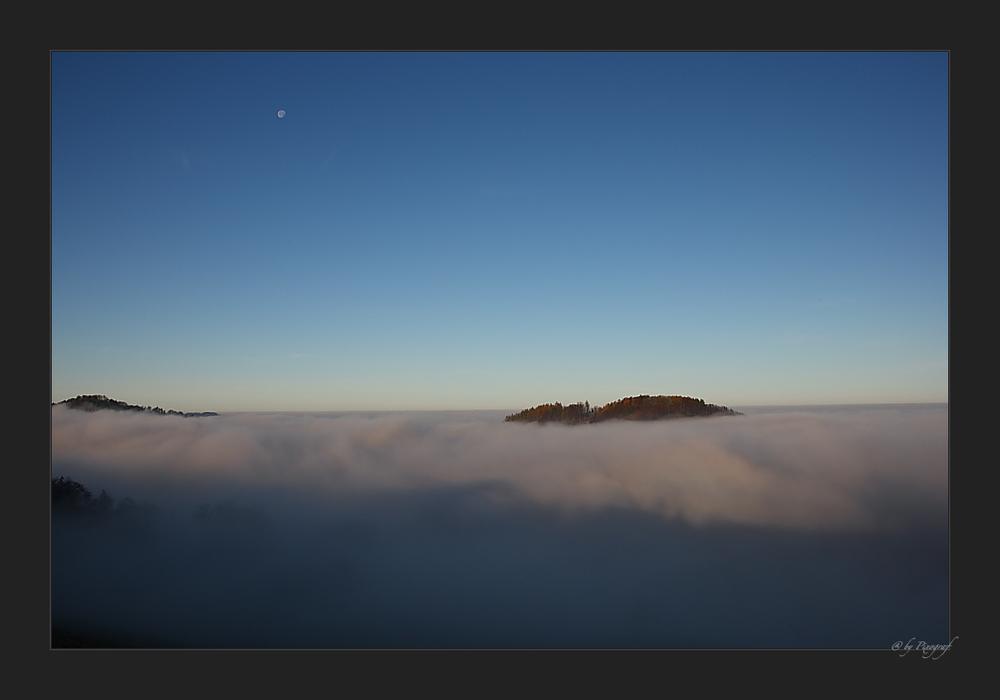.... Nebel Insel ....