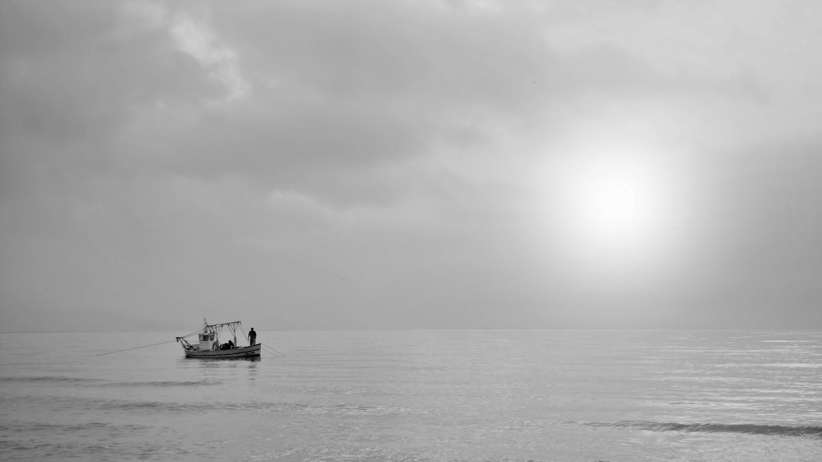 Nebel-Licht...