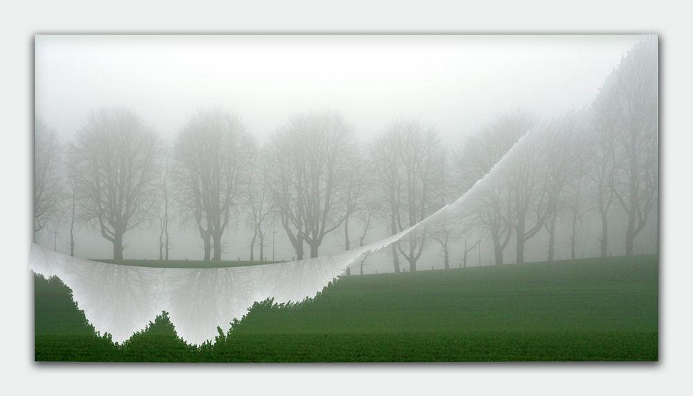 Nebel-Riss .....