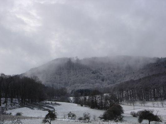 Nebel, Schnee, Wintereinbruch