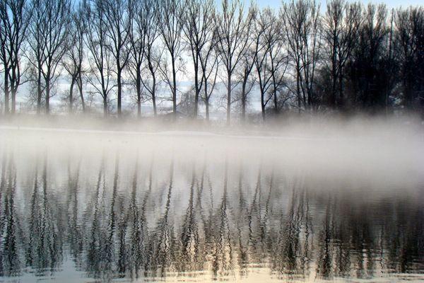 Nebel-Schwaden