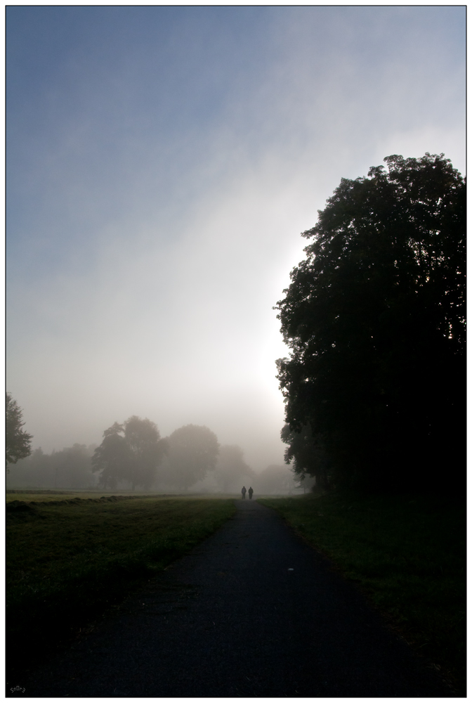 Nebel Spaziergang