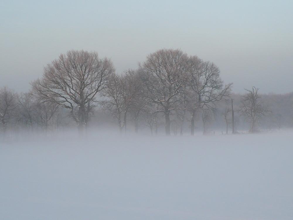 Nebel steigt auf