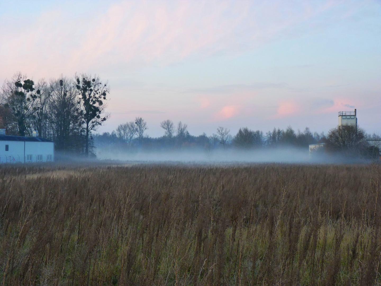 Nebel steigt auf im Naturschutz gebiet Blutwiese