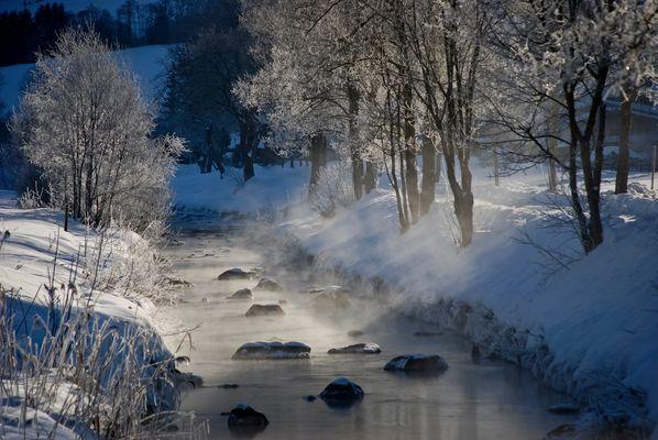 Nebel über dem Bach