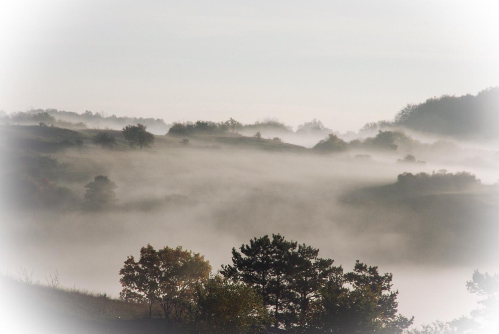 Nebel über dem Labertal