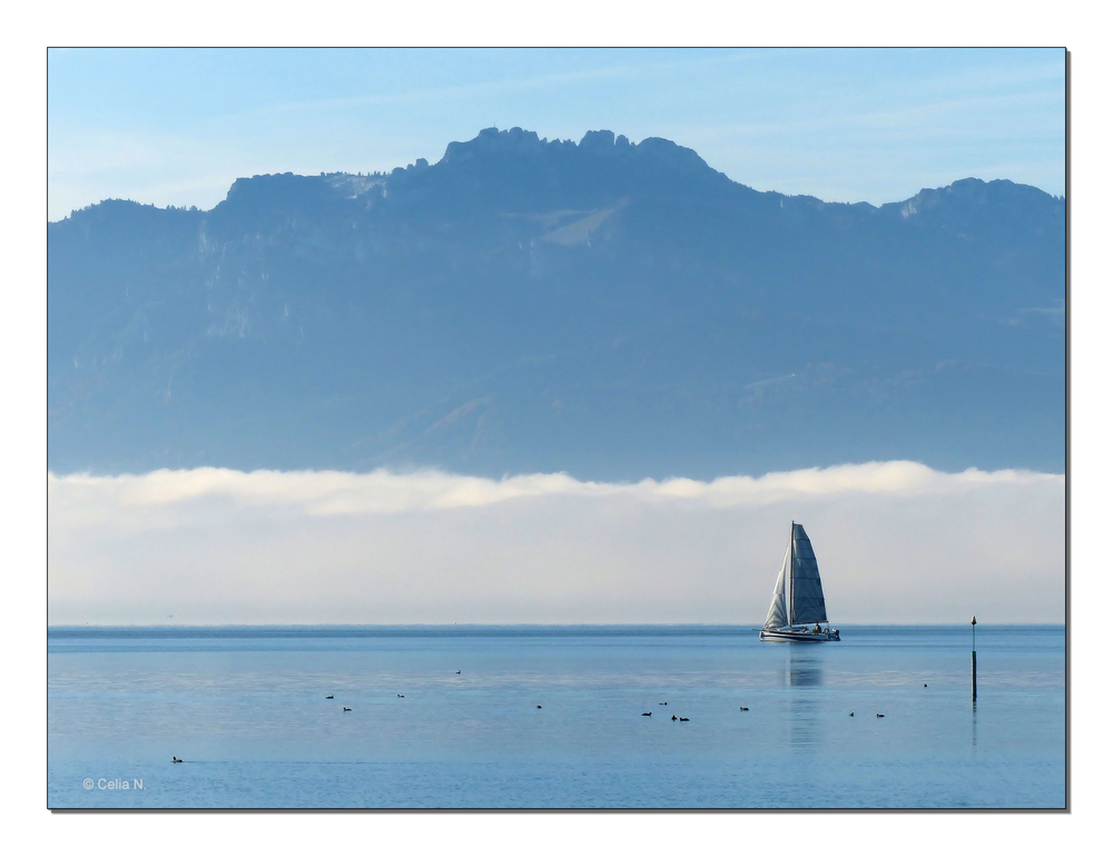 Nebel über dem See