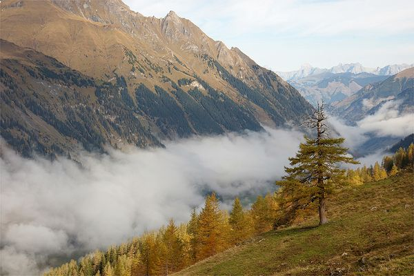 Nebel über dem Tal..