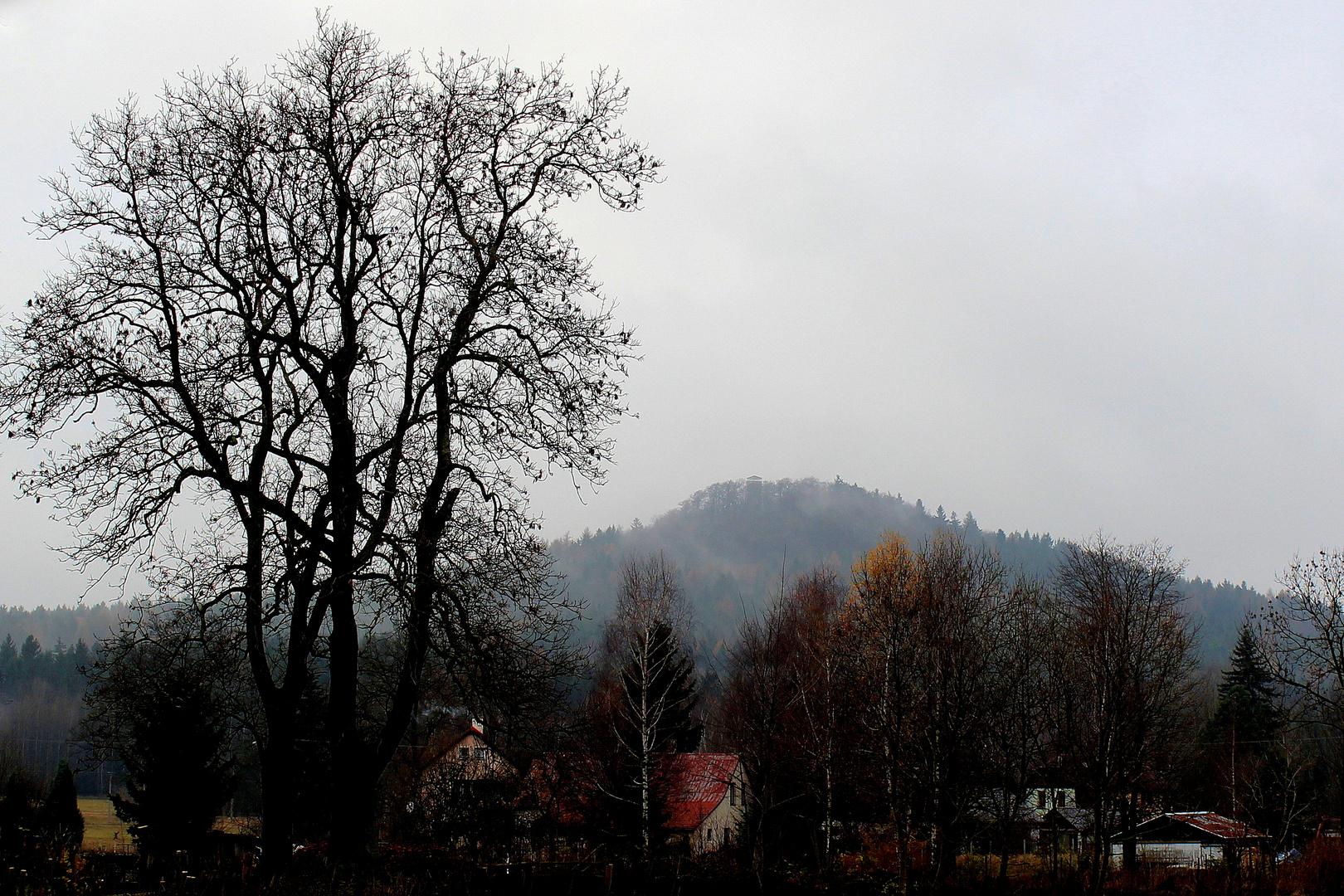 Nebel über dem Wolfsberg (Schluckenauer Zipfel)