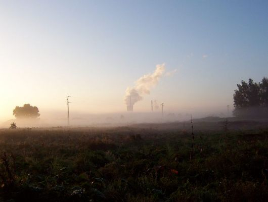 Nebel über den Feldern