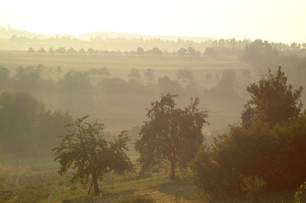 Nebel über Franken im August (1)