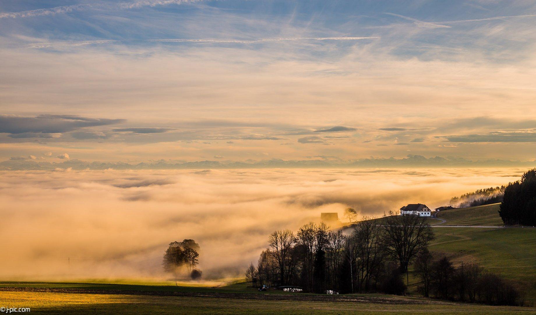 Nebel über Linz II