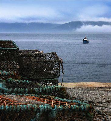 Nebel ueber Mull Schottland
