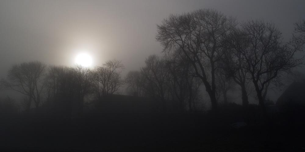 Nebel über Sylt - bald ist es wieder soweit!