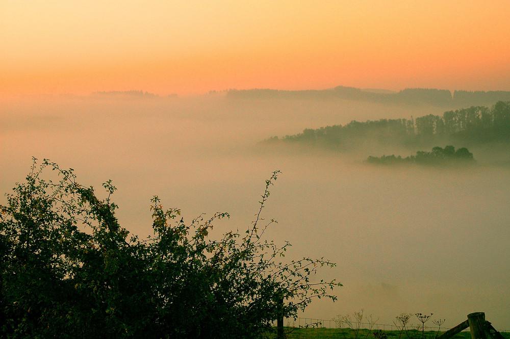 Nebel über Wenholthausen