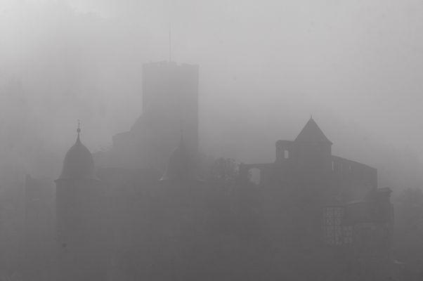 Nebel über Wertheim