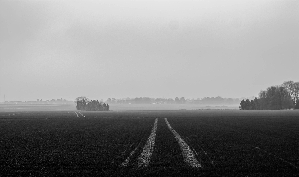 Nebel über´m Acker