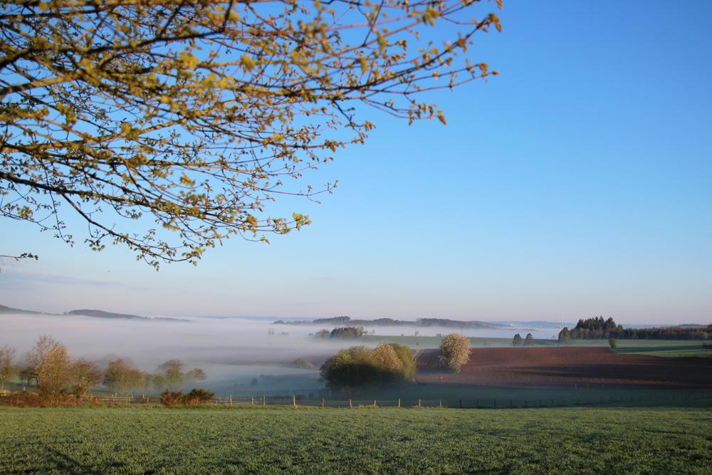 Nebel überm Tal