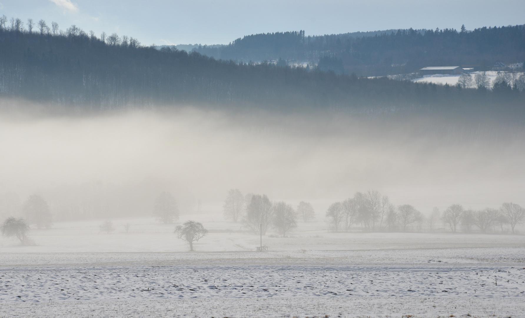 Nebel und Kälte
