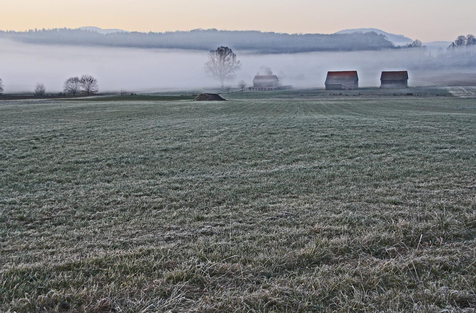 Nebel und Reif