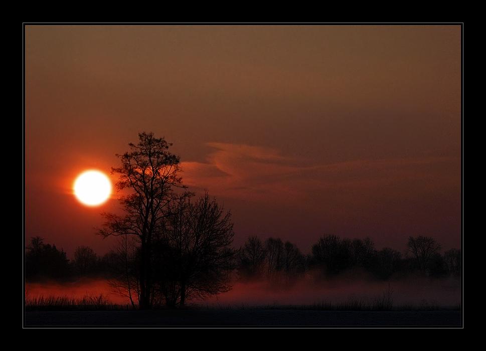 Nebel und Sonne im Isartal