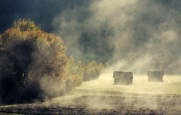 Nebel wallen