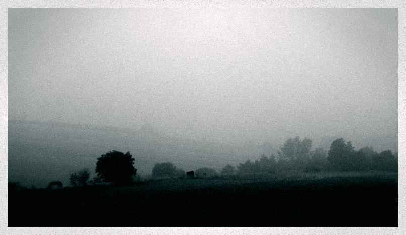 Nebel zieht in dichten Schwaden ...