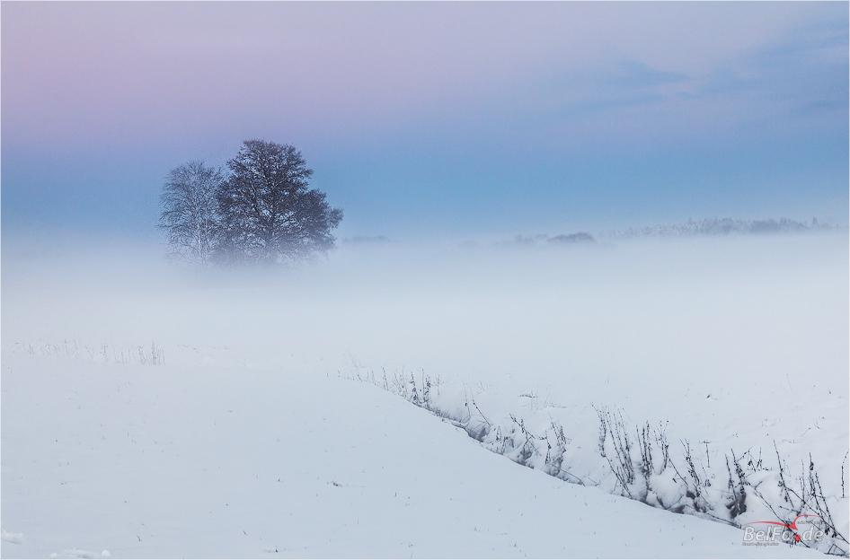 Nebel zum Sonnenuntergang