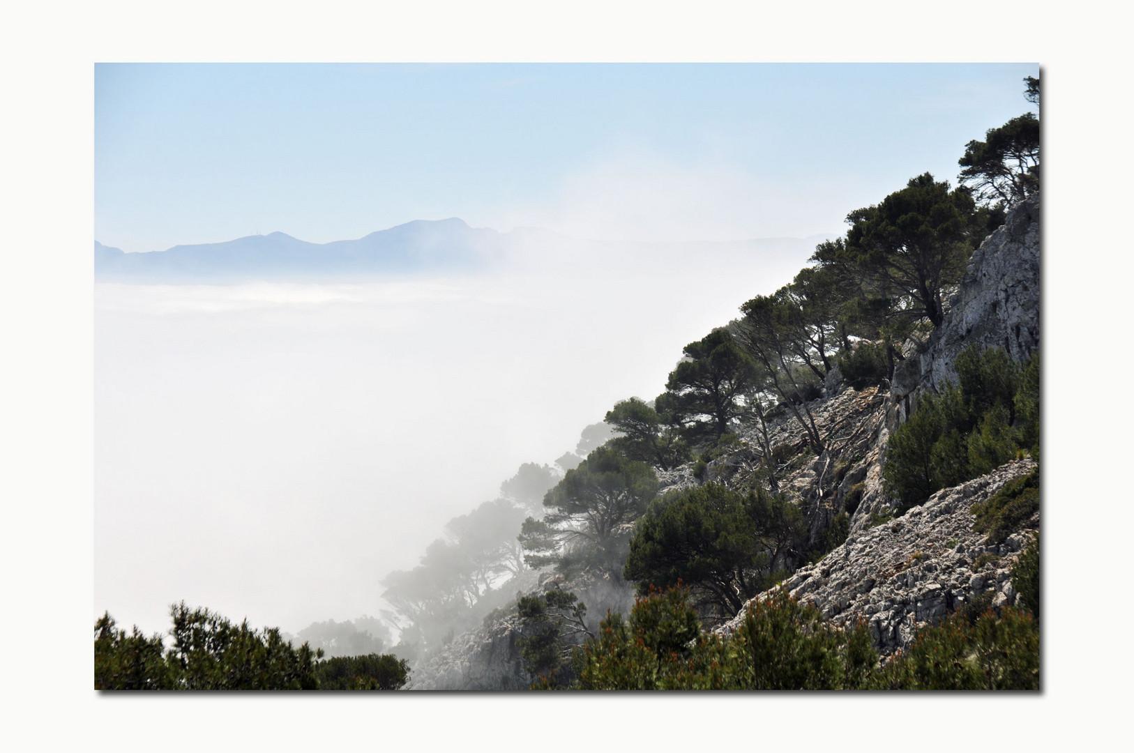 Nebelbildung