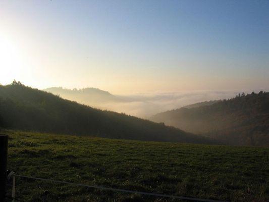 Nebeldecke (2)
