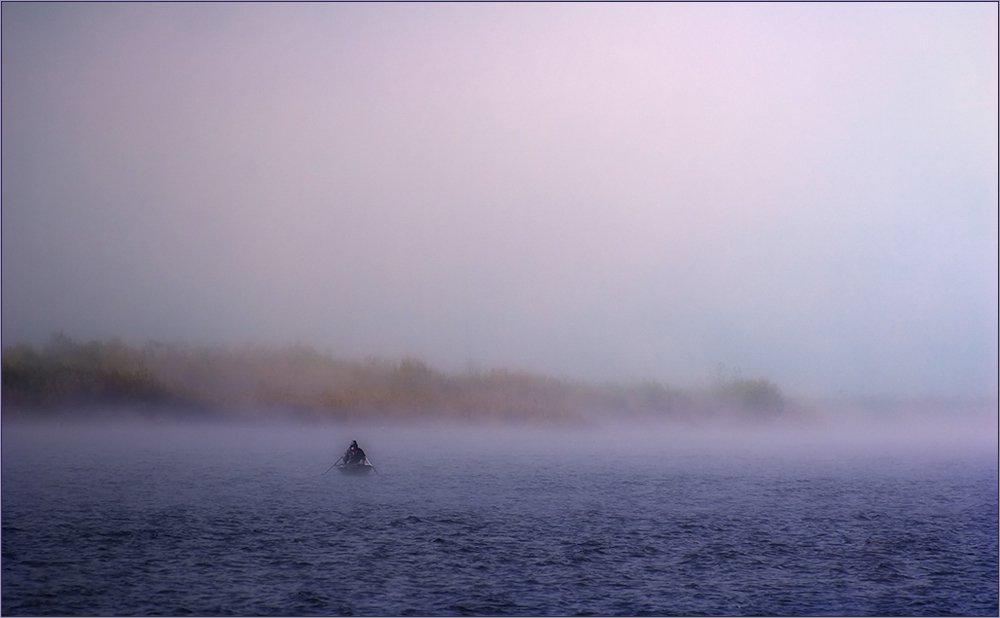 Nebelfischer