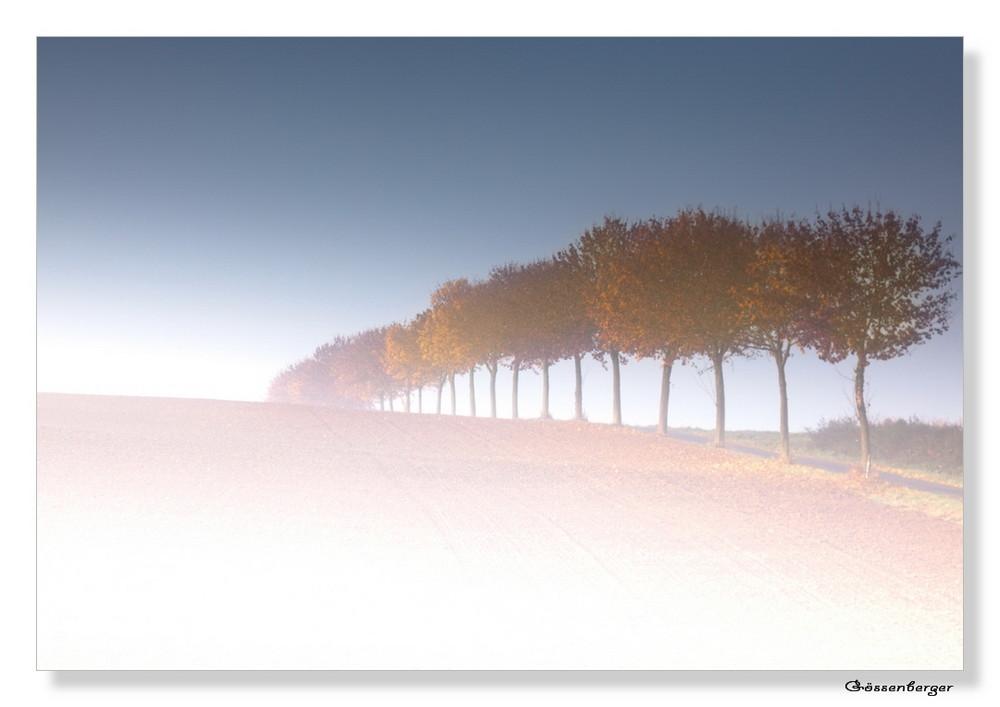 Nebelgrenze....