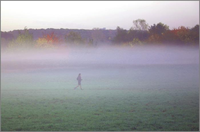 Nebelläufer