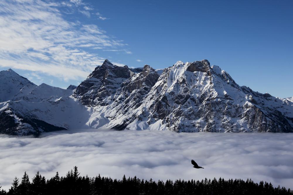 Nebelmeer, Berge & Vogel