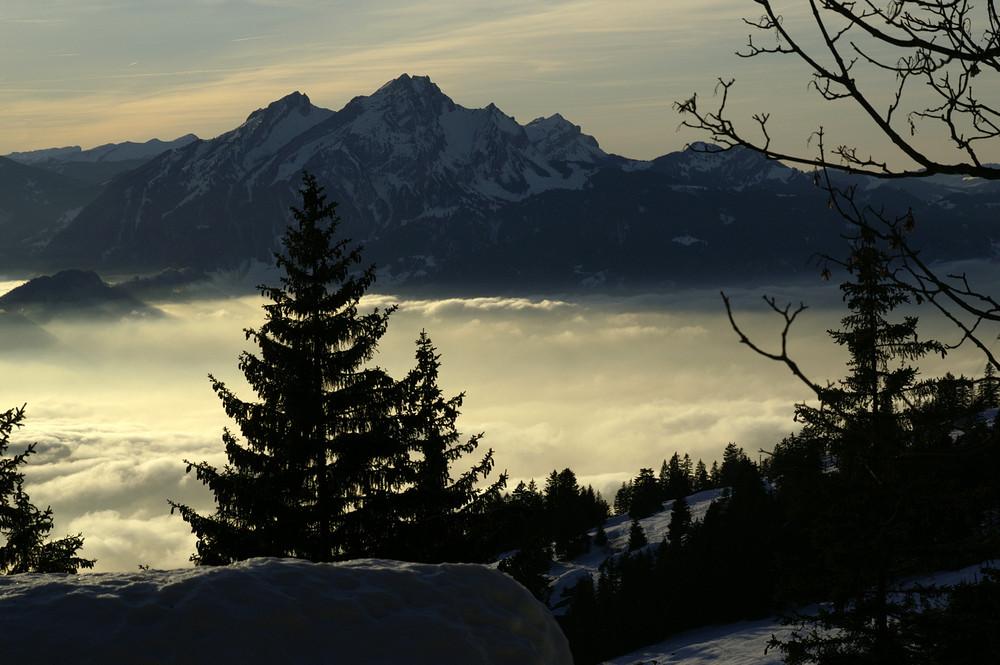 Nebelmeer Zugerberg I