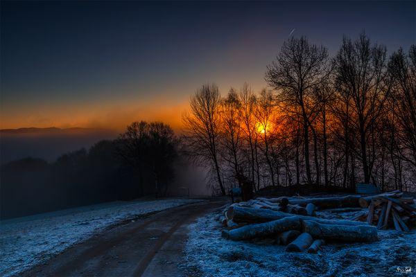 Nebelmorgen bei Obersteinhausen - Bayern646