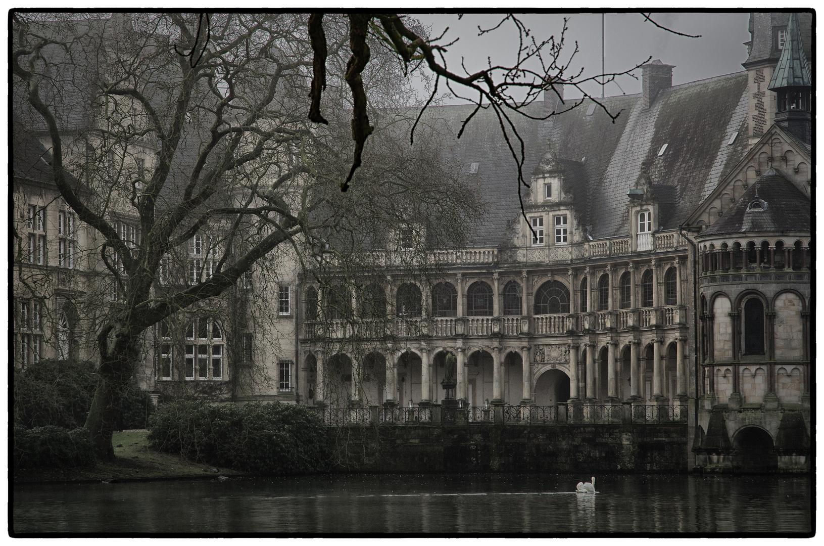 Nebelmorgen im Münsterland 3