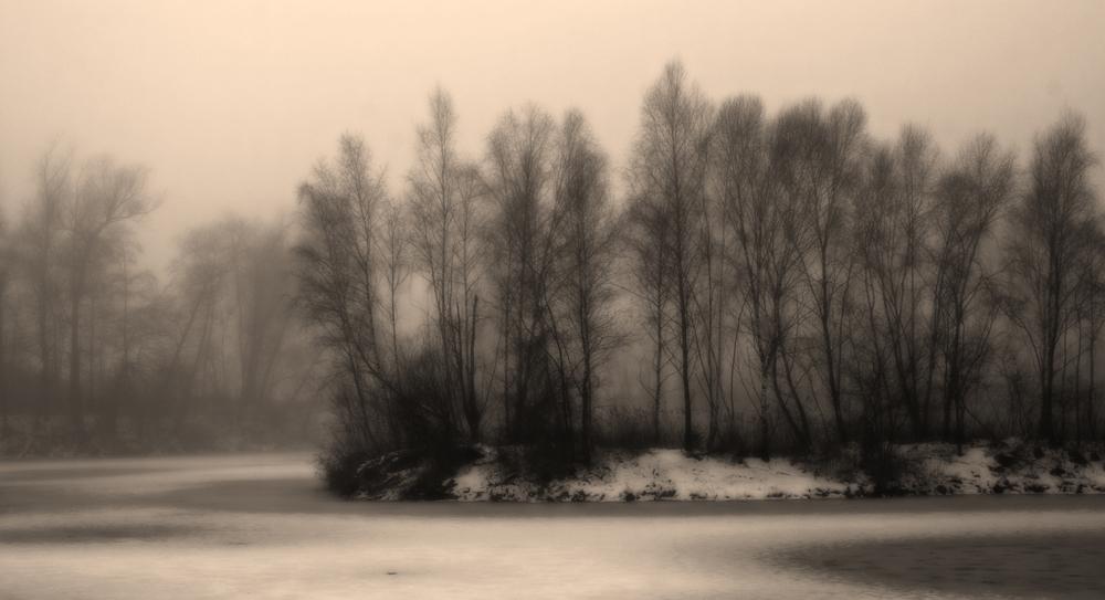 NebelPfade