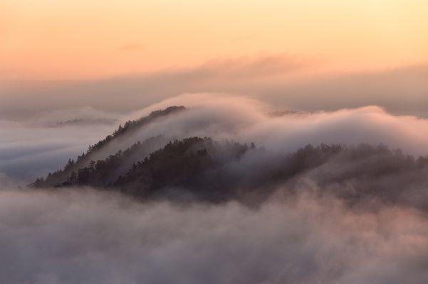 Nebelpflug