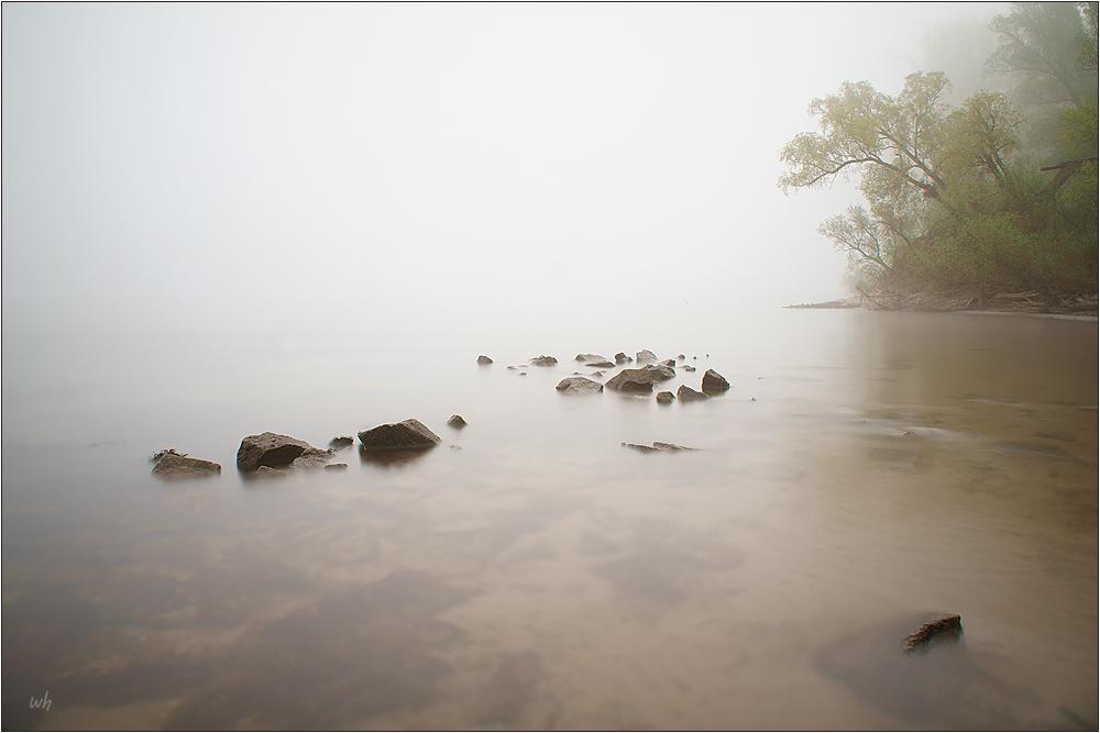 Nebelrhein