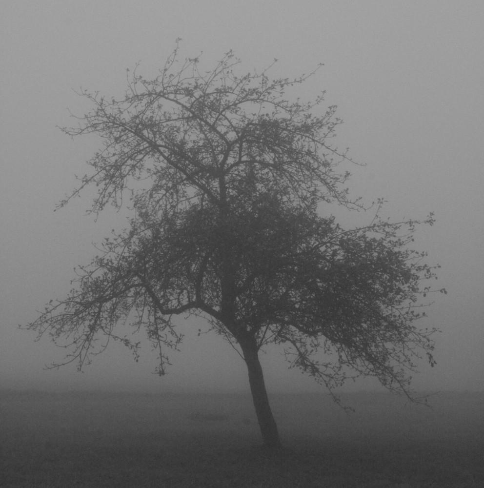Nebelriese