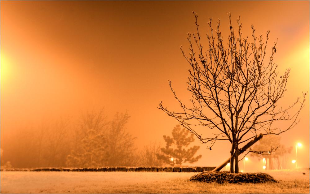 nebelsaison
