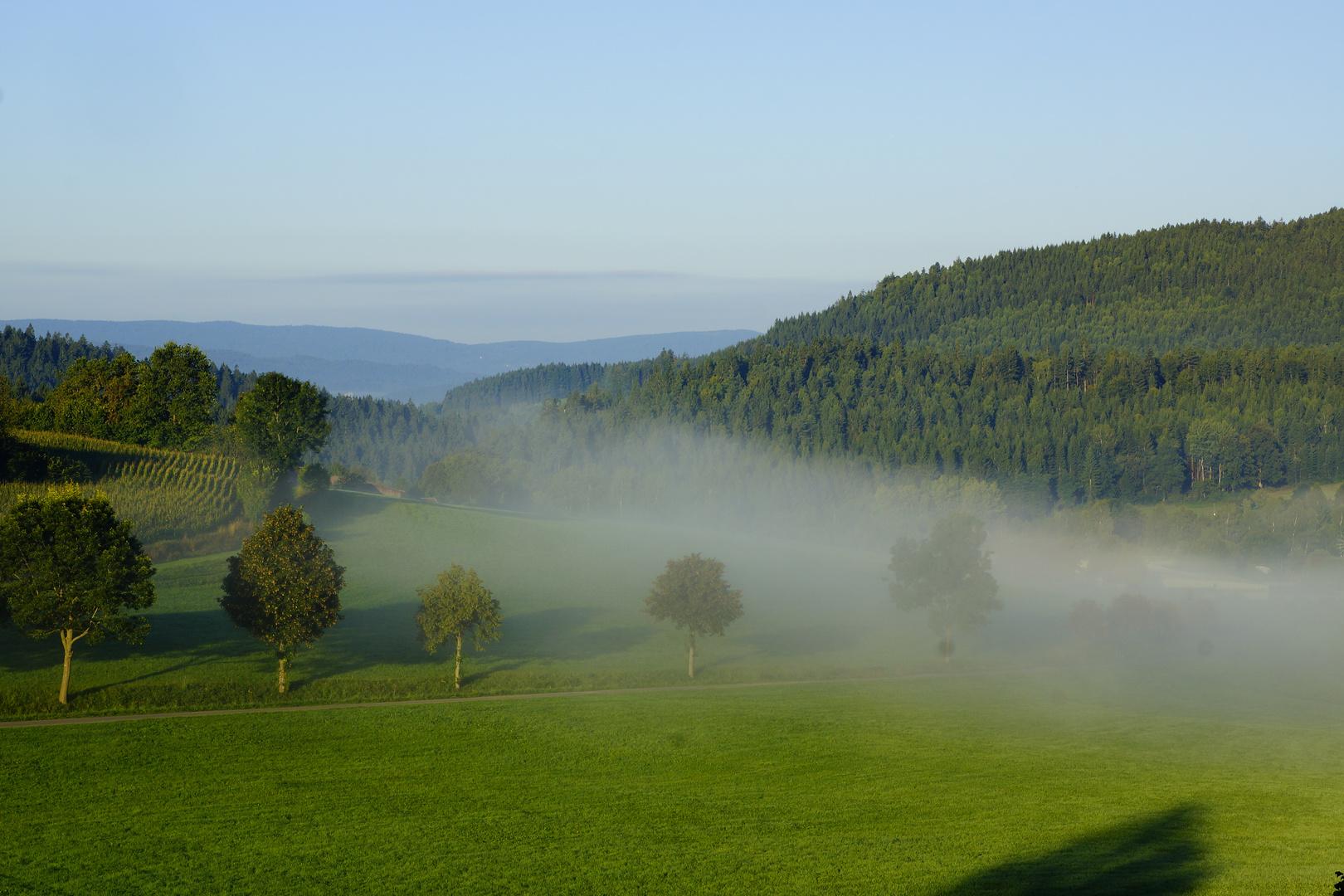 Nebelschleier am Ortsrand von Bodenmais