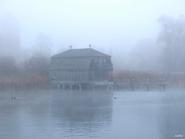 Nebelschwaden . . . .