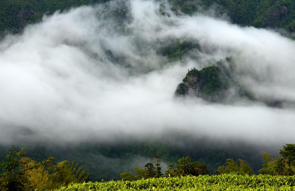 Nebelschwaden am Fozi Berg