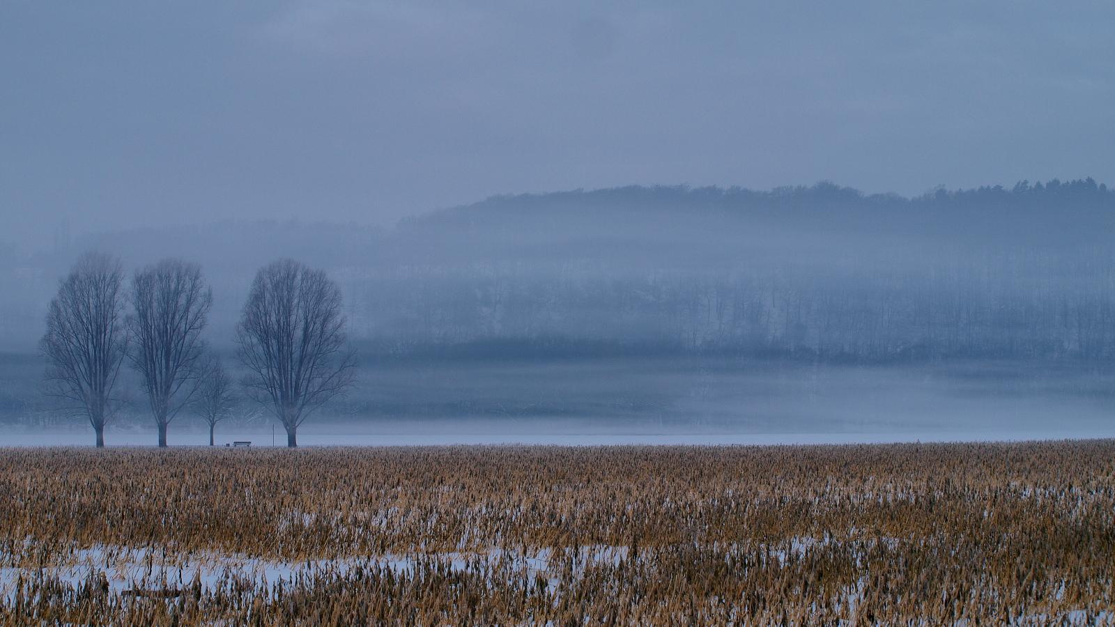 Nebelschwaden am Mintarder Weg